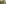 Bern, Sommer, Berg, Wald, Tal, Wasserfall, Leute, Wandern