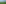 bäume, sommer, landschaft