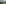 ST0044166 Lucerne Pliatus