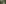 Ferreyres, Tine de Conflens