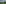 Hochmoor mit Wollgras und Birken, Moorlandschaft Rothenthurm